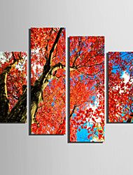 E-HOME® Stretched Canvas Art Red Tree Decoration Painting Set of 4