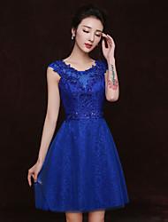 Short / Mini Lace Bridesmaid Dress Sheath / Column Scoop with Appliques