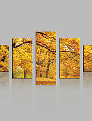 JAMMORY Canvas Set Landscape Modern,Five Panels Gallery Wrapped, Ready To Hang Vertical Print No Frame Yellow Tree