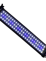 20 Inches(50cm) LED Aquarium Light AC 100-240V Blue and White Extendable Bracket LED Fish Lamp US Plug