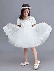 A-line Knee-length Flower Girl Dress - Tulle Short Sleeve Jewel with Lace
