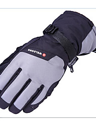 Winter Thickened Ski Gloves Waterproof Thermal Insulation Cotton Gloves and Cotton Gloves Electric Motorcycle Gloves