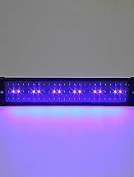 20 дюймов (50 см) свет аквариума СИД AC 100-240V синий и белый выдвижной кронштейн привело рыбы лампы ес пробку