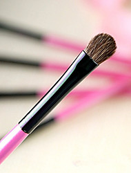 Eyeshadow Pony Brush
