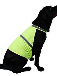 Katzen Hunde Weste Orange Gelb Hundekleidung Sommer Frühling/Herbst einfarbig Sport Lässig/Alltäglich