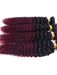 Brazilian Curly Hair Afro Kinky Curly Hair 4 Bundles Lot Brazilian Kinky Curly Virgin Hair Human Hair Extensions