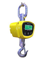 OCS-HT-I 250kg Small Electronic Hook Scale