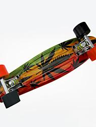 PP (Polypropylene) Kid's Standard Skateboards Flower/Floral