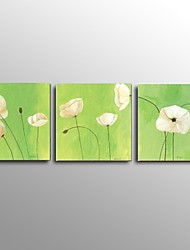 Stretched Frame Hand-Painted Modern Flower Oil Painting on Canvas Home Wall Art Ready to Hang