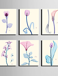 E-HOME® Stretched Canvas Art Transparent Color Flowers Series Decoration Painting MINI SIZE One Pcs