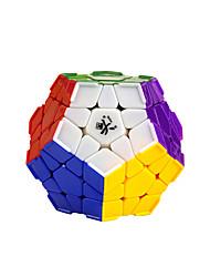 / Glatte Geschwindigkeits-Würfel Megaminx / Druck-Helfer / Magische Würfel Regenbogen Plastik