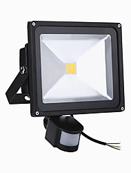 HRY® 50W LED Floodlight PIR Motion Sensor LED Flood Light Induction Sense Lamp Integrated Lamp (AC85-265V)