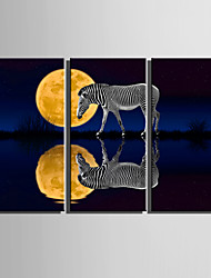 E-HOME® Stretched Canvas Art The Moon Reflection In The Water Decoration Painting  Set of 3