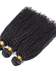Indian Kinky Curly Human Hair Weaves Texture 100 grams 8inch to 30inch Human Hair Extensions