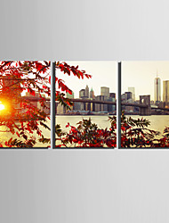 E-HOME® Stretched Canvas Art A City On The Shore Decoration Painting  Set of 3