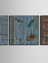 E-HOME® Stretched Canvas Art Butterfly Pattern Decoration Painting  Set of 3
