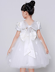 Ball Gown Knee-length Flower Girl Dress - Cotton / Lace / Organza / Satin / Tulle Short Sleeve Jewel withAppliques