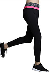 Women's Sexy Quick Dry Tights High Waist Compression Long Sports Pants Fitness Running Yoga Leggings