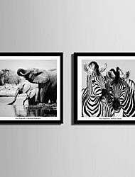 E-HOME® Framed Canvas Art, Zebra And Elephant Framed Canvas Print Set Of 2