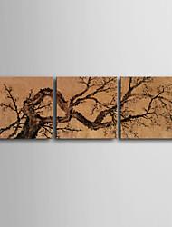 Пейзаж / ботанический Холст для печати 3 панели Готовы повесить , Квадратный