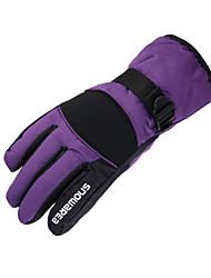 Gants de ski Homme / Tous Gants sport Garder au chaud / Etanche Ski / Moto / Snowboard PU Gants de ski Hiver