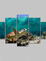 Canvas Set Animal Modern,Five Panels Canvas Any Shape Print Wall Decor For Home Decoration