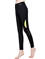 Women Cross - spliced Legging,Cotton Core Spun Yarn