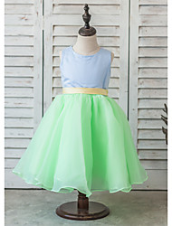 Ball Gown Knee-length Flower Girl Dress - Organza / Satin Sleeveless Scoop with Bow(s) / Sash / Ribbon