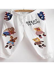 Feminino Harém Chinos Calças-Cor Única Casual Simples Cintura Média Com Cordão Algodão Micro-Elástico Outono