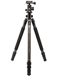 Sirui R1204 G10Kx Carbon Tripod Carbon With Folder Fast Loading Board Feet For Micro Single General/Slr Camera