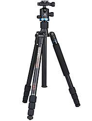 Benro Tripod If28 For  Canon Nikon Slr Camera Reflex/Convertible/Stand Alone/Super Lock/Stable Portable