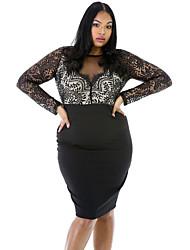 Women's Long Sleeve Lace Top Plus Size Dress