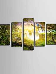 E-HOME® Stretched Canvas Art The Amazing Animals in The Forest Decoration Painting  Set Of 5