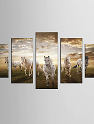 Canvas Set Landscape / Animal Modern / Classic,Five Panels Canvas Any Shape Print Wall Decor For Home Decoration