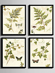 E-HOME® Framed Canvas Art Leaves And Dragonfly Framed Canvas Print Set Of 4