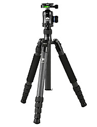 Sirui Tripod N-3205-X K30X Carbon With Variable Containing Folder Fast Board Feet Alone For Micro Single General Slr Machine