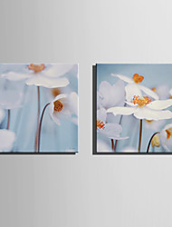 E-HOME Stretched Canvas Art Hazy White Flowers Decoration Painting Set Of 2