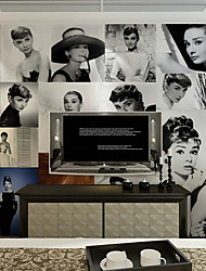 JAMMORY Art Deco Wallpaper Retro Wall Covering,Canvas Large Mural Character Photo Wall