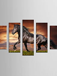 Canvas Set Famous Animal Modern Realism,Five Panels Canvas Any Shape Print Wall Decor For Home Decoration