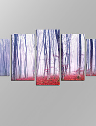 VISUAL STAR®Auntumn Foggy Forest Picture Giclee Artwork 5 Panels Modern Home Wall Decoration Framed Canvas Print Ready to Hang