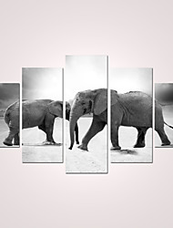 Stretched Canvas Print Animal Modern,Five Panels Any Shape Print Wall Decor For Home Decoration