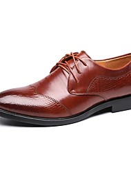 Westland's Men's Oxfords/Business Style/Leather/Wax Lace/Fashion Trend/Comfort/Office Dress/Black/Brown