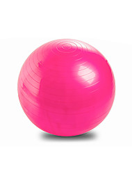 65cm Fitnessball PVC Rosa Blau Purpur Unisex Other