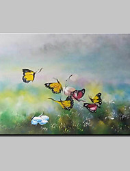 Hand-Painted Animal Butterfly Oil Painting On Canvas Modern Wall Art Picture For Home Decoration Ready To Hang