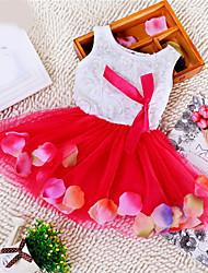 Menina de Vestido Floral Verão Sem Manga