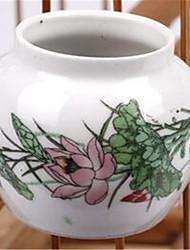 Bird Feeding & Watering Supplies Ceramic White