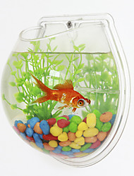 mini-aquariums fond mini-aquarium mural blanc en plastique transparent vert