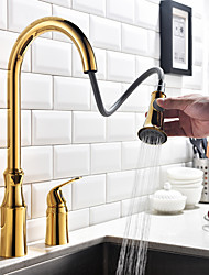 Pull-out/Pull-down Kitchen Faucet Golden Standard Spout Centerset Thermostatic Rain Shower Pullout Taps for Kitchen