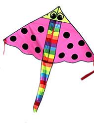 kites Triângulo Diversão Ao Ar Livre & Esportes Inovador Náilon Unisexo