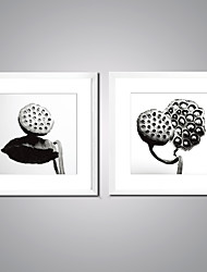 Canvas Print Black and White Lotus Seedpod Print Art on Canvas Contemporary Lotus Painting with White Frame for Wall Decor Ready to Hang